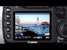 15 Best Canon 7d images in 2017 | Photography 101