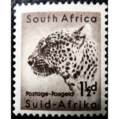 South Africa, Wild Life, Leopard, 1954 1 d, unused Japanese Cat, Hindu Art, Rare Coins, Antique Shops, Wild Life, Big Cats, Postage Stamps, South Africa, Seals