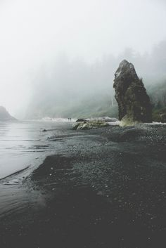 foggy coastlines