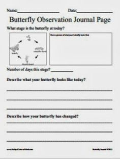 #Free #butterfly observation journal page
