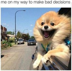 Me on my way to make a bad decision