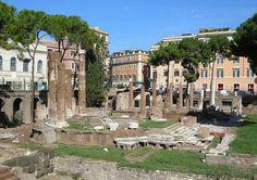 Zona Sagrada del templo del Largo Argentina, Roma Italia