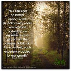 You grow on you path. #3inity #inspirational #dailyinspiration #positivethought