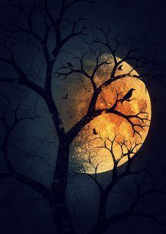 Moon Love ~ AncientAllies (.blog)