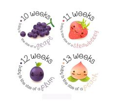 Items similar to Pregnancy Stickers - Belly Stickers - Baby Bump Weekly Stickers - Pregnancy Reveal - Pregnancy Announcement on Etsy Pregnancy Months, Pregnancy Photos, Baby Diary, Maternity Photo Props, Baby Stickers, Twin Babies, Baby Bumps, Baby Month By Month, Etsy