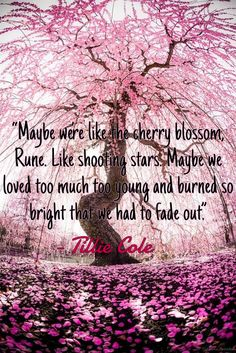 @lilyslibrary A Thousand boy Kisses by Tillie Cole #romance #book