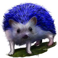 13 Best Real Life Sonic The Hedgehog Images Hedgehog Sonic The Hedgehog Real Life