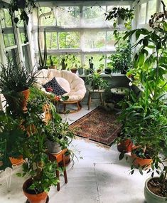 Indoor jungle - Apartment garden indoor sunrooms Ideas for 2019 apartment garden Decoration Chic, Decoration Plante, Balcony Decoration, Indoor Sunrooms, Minimalism Living, Small Sunroom, Small Patio, Jungle Decorations, Garden Decorations