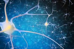 Did you think that your brain can't change? The discovery of synaptic plasticity overturned that belief. Here we describe natural ways to hack your brain. Mental Health Symptoms, Mental Health Problems, Brain Health, Mental Illness, Black And Blue Background, Psychiatric Medications, Neurone, Gut Brain, Neuroplasticity