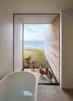 Cliff House by Dualchas #Architects © Andrew Lee - #bathroom with an 'interesting' view