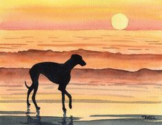 """Greyhound Sunset"" by DJ Rogers"
