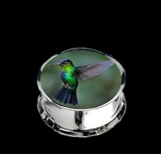 Pair Stainless Steel Hummingbird Plugs for Stretched Ears - Pick Your Size, Custom Made