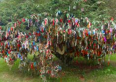 The Peace Tree in the Garden of the Kagyu Samyé Ling Tibetan Buddhistt Monastery in Eskdalemuir, Scotland