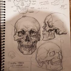 Excellent Pictures skull drawing tutorial Thoughts Desire to learn how to draw? You're in the proper place. Whether you're a starter trying to find Art Du Croquis, Gcse Art Sketchbook, Sketchbook Layout, Sketching, Sketchbooks, Sketchbook Ideas, Love Doodles, Sketchbook Inspiration, Journal Inspiration