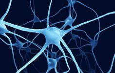 Unravelling the mystery of the most common genetic cause of motor neuron disease