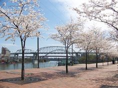 Riverfront in Nashville Tennessee