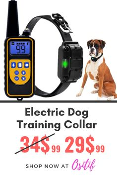 Fully waterproof design Adjustable levels 3 training modes: shock / vibration / sound With blue backlight screen 3 channels Auto power save Adjustable collar size (suitab. Training Collar, Dog Training, Funny Animal Videos, Funny Animals, Dog Accesories, Dog Shock Collar, Dog Pin, Dog Products, Dog Memes