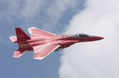 Japanese F-15 Fighter