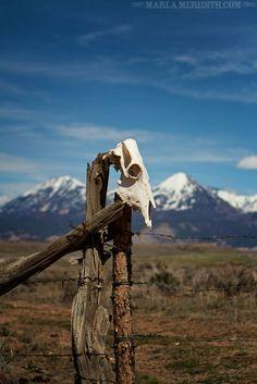 The Great Outdoors, Colorado | FamilyFreshCooking.com