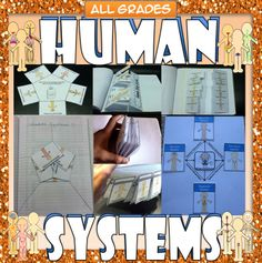 Human Body Systems Interactive Graphic Organizers (IGOs) and Activities for the Biology / Life Science Interactive Notebook