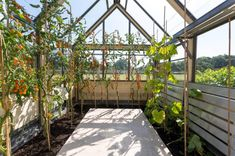 Superior Quality Greenhouses by Design | UK | Cultivar Greenhouses Contemporary Greenhouses, Greenhouse Cost, I Am An Engineer, Class Design, Ventilation System, Carbon Footprint, Modern Materials, Superior Quality, Glass Panels