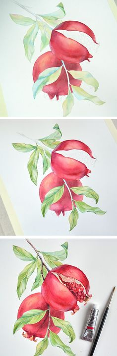 Pomegranate botanical illustration- watercolor tutorial by Kateryna Savchenko