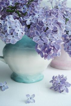 Tell me who doesn't like lilacs!