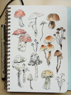 "catsubun: ""mushroom watercolour, photography study "" sketch Beware the autumn people. Kunstjournal Inspiration, Sketchbook Inspiration, Art Sketchbook, Mushroom Drawing, Mushroom Art, Art And Illustration, Illustrations, Watercolour Illustration, Kunst Inspo"