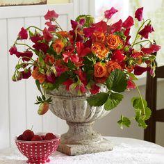 Sommerliche Blumen-Dekoration zum Selbermachenn - 944207_DuftwickenMitRosenUndErdbeerranken_600x60016
