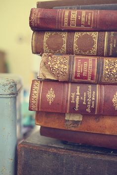 old books | liljeborg