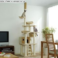 1000 Images About Cat Tree On Pinterest Cat Trees Cat