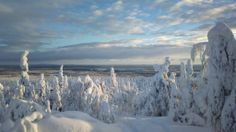 Winter in Lappland Finland
