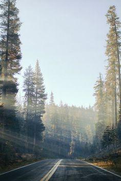 Tioga Pass Morning - By: (Kyle D Adams) - (Follow on Tumblr)