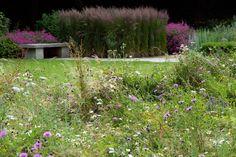 Dan Pearson Old Rectory, Gardenista: plants as feathered walls Plant Design, Garden Design, Prairie Meadows, Dan Pearson, Formal Gardens, Garden Stones, Water Garden, Garden Inspiration, Garden Ideas