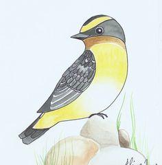 Bird Art / Original Painting / Wall Art / Room Decor /Nursery Decor / Yellow Bird with Grey