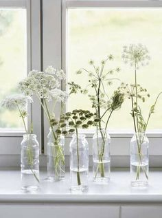 13 ways to decorate your windowsill this spring (and summer) on domino.com