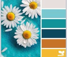 Daisy color palette... Add charcoal gray