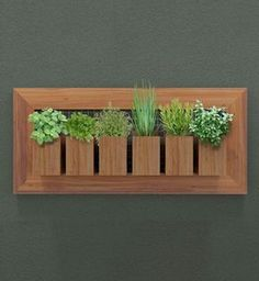 bamboo planter boxes in wooden frame for an organized herb garden Wooden Planters, Planter Boxes, Bamboo Planter, House Plants Decor, Plant Decor, Flower Boxes, Diy Flowers, Indoor Garden, Indoor Plants