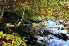 """Résultat de recherche d'images pour """"lac et rivière"""" Images, Water, Outdoor, Paisajes, Search, Water Water, Outdoors, Outdoor Games, The Great Outdoors"""