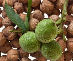 Zielone orzechy włoskie na układ pokarmowy i choroby tarczycy Thyroid, Pear, Avocado, Health Fitness, Healing, Diet, Fruit, Beauty, Food