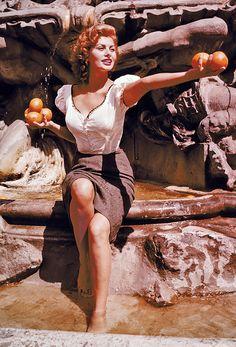 Sophia Loren                                                                                                                                                      More