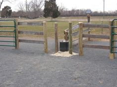 """from  """"green horse design and management""""    A smart design feature was extending the wood fence along the pasture before switching to an electric fence.  This allows the horses to approach the waterer without fear of getting accidentally shocked."""