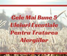 Cele Mai Bune 5 Uleiuri Esentiale Pentru Tratarea Alergiilor | VIVASANSHOP Mai, Health, Fitness, Salud, Health Care, Healthy, Keep Fit, Health Fitness, Rogue Fitness