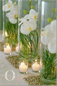 Vase tube et orchidées