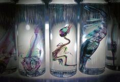 iori tomita: new world transparent specimens