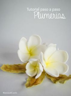 Royal Icing Flowers, Fondant Flowers, Clay Flowers, Ceramic Flowers, Fondant Flower Tutorial, Sugar Paste Flowers, Plumeria Flowers, Cake Decorating Tutorials, Pasta Flexible