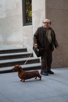 Danny DeVito - in NYC