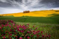 Photo The Tuscan Land by Francesco Riccardo Iacomino on 500px