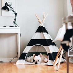 "5,683 Me gusta, 79 comentarios - Blog De Decoração (@eutambemdecoro) en Instagram: ""Boa noite! 😍 Foto: Pinterest  #decoration #decorando #decorar #decoracion #decoração #decoration…"""
