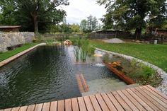 Biotope - Natural pools